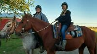 Western Riding Instruction for all ages
