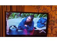Samung 51in 3D TV
