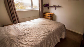 BRIGHT DOUBLE ROOM AVAILABLE