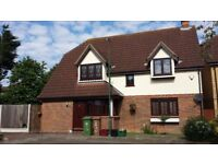 "Beautiful 4 bedroom house on a large plot in much sought after area ""Hollies""."