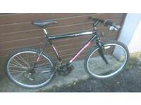 UNIVERSAL MENS MOUNTAIN BIKE 🚴, 21 INCH FRAME, 26 INCH WHEEL'S, 18 GEARS, GOOD CONDITION...