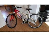 Ladies mountain bike - Dawes