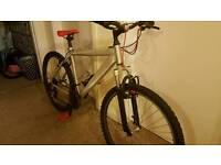 Diamondback Mountain Bike Custom
