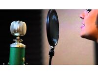 Blue Kiwi Multi-Pattern Studio Condenser Microphone. Hardly used.