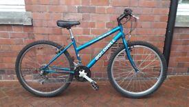 Women's Mountain Bike (Goldhill)