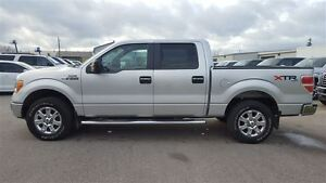 2013 Ford F-150 XTR 4X4 | One Owner | Tow Pkg Kitchener / Waterloo Kitchener Area image 7