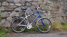 Trek Navigator 200 Bike