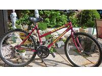 Ladies Bike 18 Gears