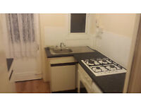Large One Bedroom Ground Floor Maisonette with Garden available in Catford