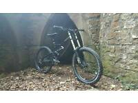 Specialized status custom downhill mountain bike