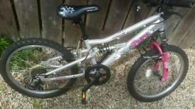 20 inch mountain bike
