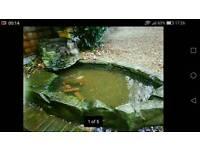 Pond rock effect