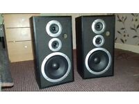 PIONEER 100 WATT SPEAKERS