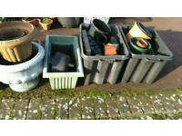 Plastic plant pots free to collector
