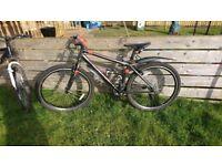 2 bikes quick sale. Correra and apollo phase. Correra used once