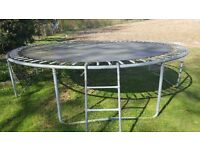Free to collect trampoline
