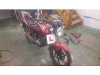 Kymco Pulsar Project bike