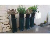 Ceramic plant pot stands.