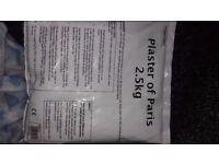 Plaster of paris 2.5kg