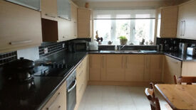 Kitchen complete, units and appliances as photos for sale