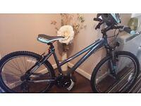 Ladies Raleigh Talus20 bike