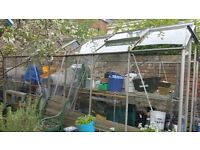 Free to dismantler 16ft x 8ft geeenhousr..some broken panes but surely will make a whole one! make