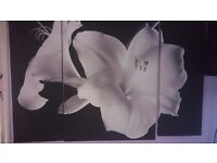Large Next black and white floral 3 piece canvas