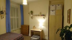 Cosy room in gay friendly flat 2min walk from Turnpike lane station for one working professional