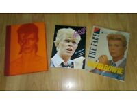 3 x david bowie books /face magazine 1983