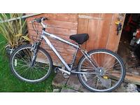 ladie bike