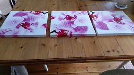 pink and white orchid pictures on wooden canvas