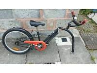 Revolution (Edinburgh Bicycle) Glider tag along trailer