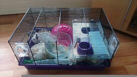 Hamster cage/ starter kit