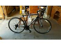 Specialized allez road bike 56