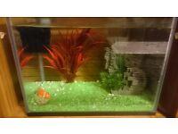 21L fish tank for sale