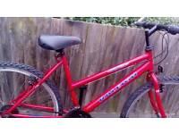Ladies USA Raleigh bike