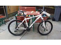 specialized mountain bike,WHITE,disc back and front
