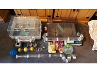 2 hamster cages + accessories