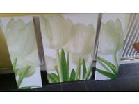 Large Tulip Canvas Wall Art