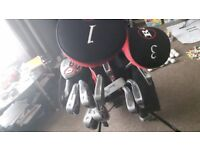 Golf clubs with bag, tees, glove and balls.