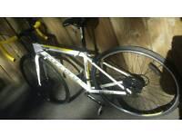 "Carrera TDF LTD 17"" road racer racing bike bicycle unisex not specialized fixie single trek giant"