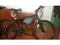 mountain bike (apollo mentor)