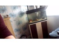 fish tank and stand this is now sold thanks