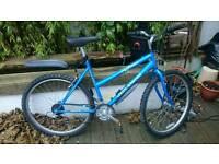 Raleigh Jamtland unisex city bike, hardly used