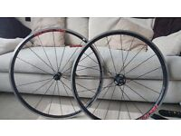 Fulcrum Racing lg 55 wheelset