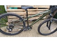 Surprizingly clean and straight Diamondback FRICTION. Medium in THAT green