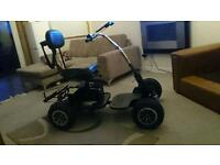 Golf buggy with 18hole Lithium battery