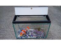 Aquarium fish tank with some accessories £20 ono.