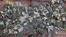 Green pannel decorations