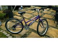 """Vintage Raleigh krush mountain bike .13 speed 24"""" wheels could do with a new saddle .£20 O.n.o."""